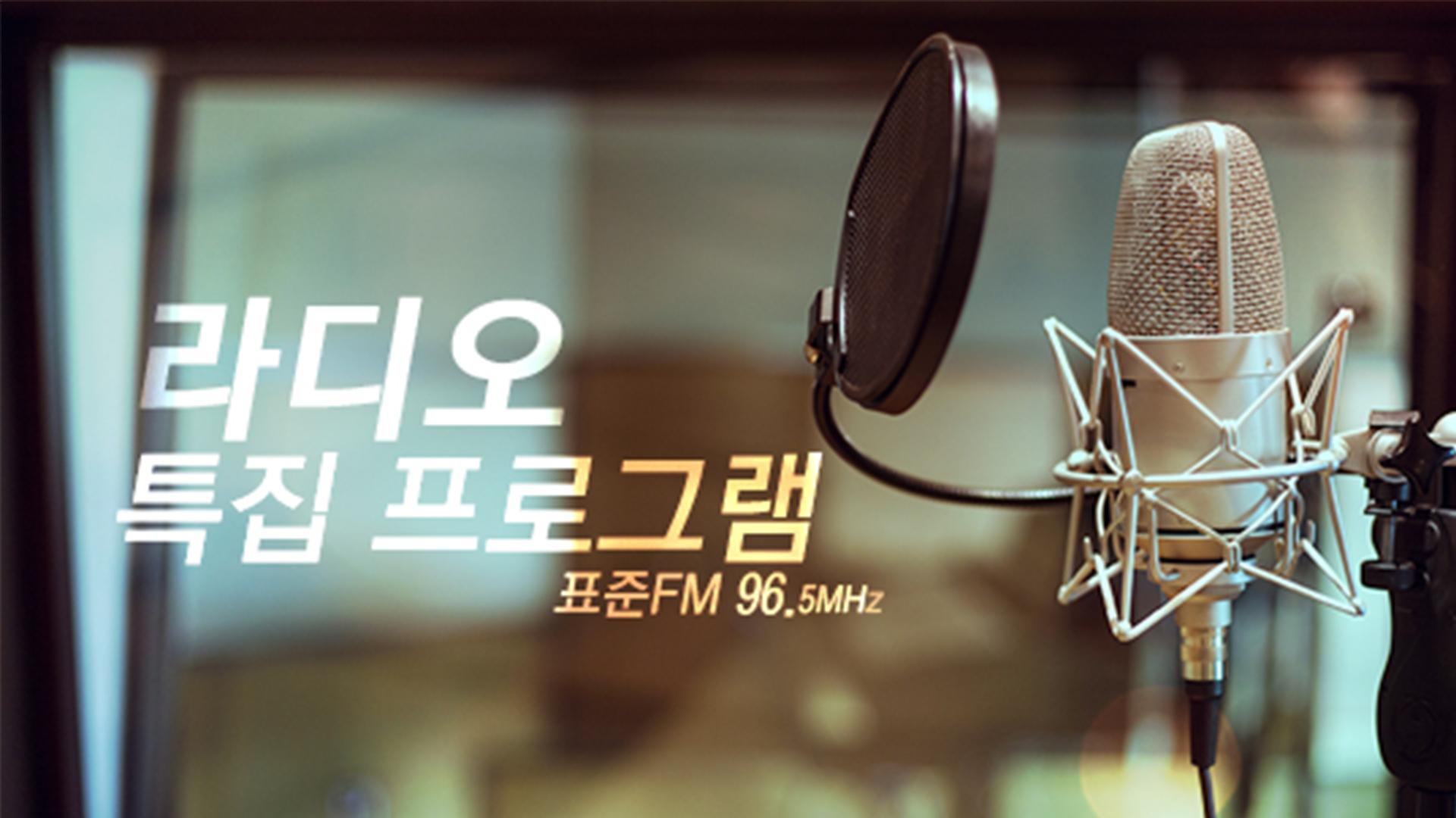 특집프로그램(라디오)